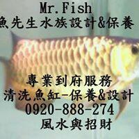 魚先生水族館-魚缸清洗,保養,客製化訂做,客製化訂製魚缸,造景設計,風水